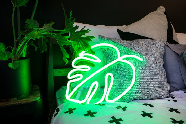 green neon plant leaf monstera bedroom